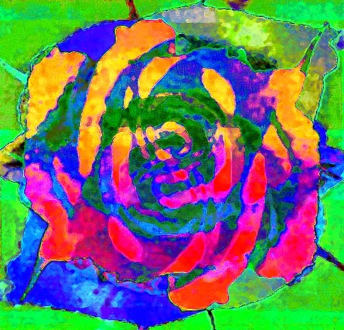 overlapped rose 2