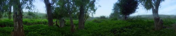 Dalia river  - a panorama view