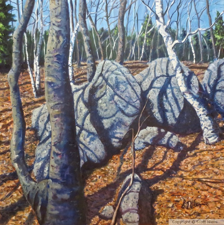 'Beeches, Birches, and Boulders