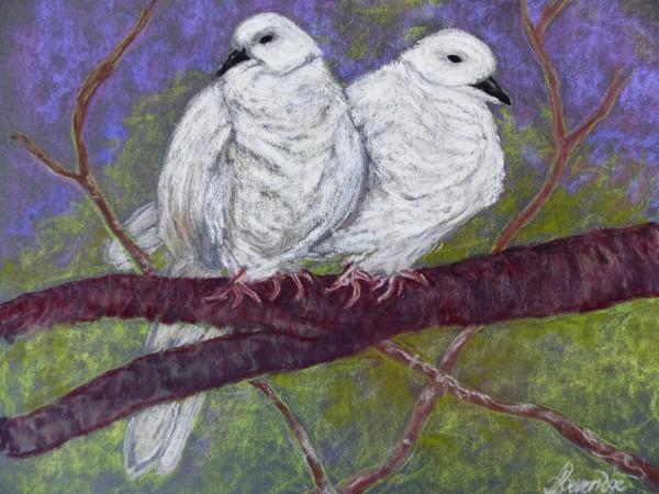 Pidgeon Pair