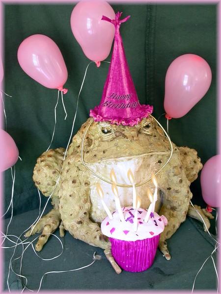 Dawn'w Birthday Toad