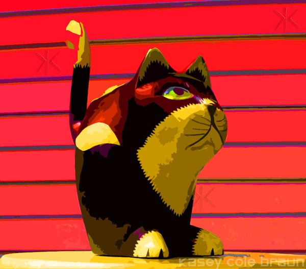 Cat 003