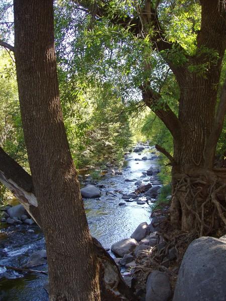 Sedona, Arizona Creek  6