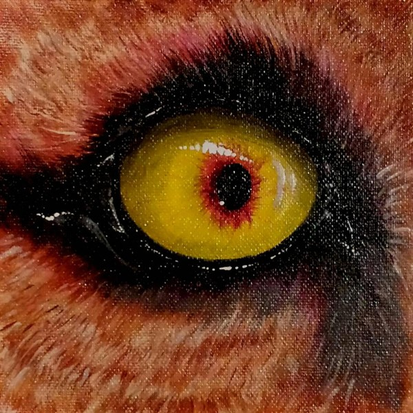 Eye Of The Lion 2