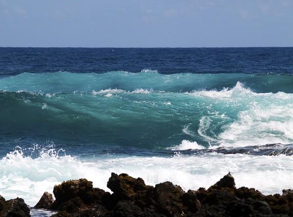 Double Waves- Hawaii