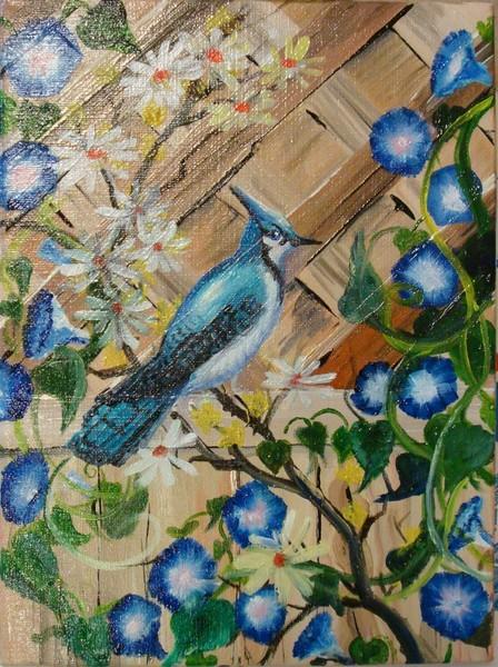 Blue Birds on my Glories 1