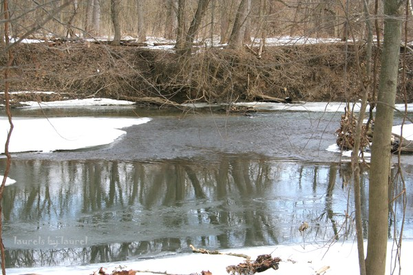 Icy Stream Reflections