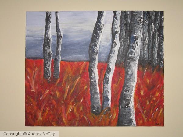 Grass Land Trees at Dusk