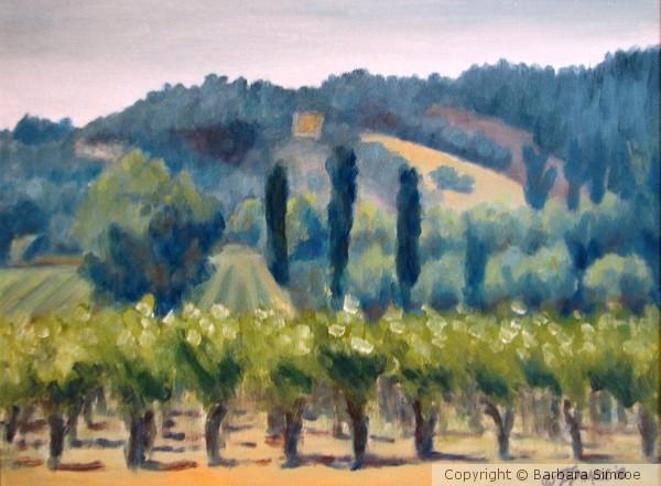 Chaeau St. Jean vines #1