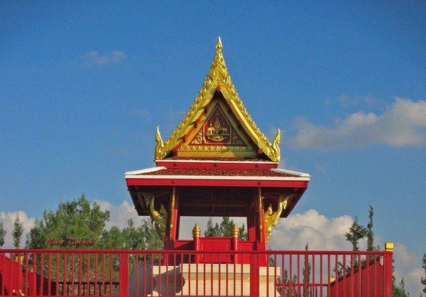 To Be and NOT really to Be at the Pagoda