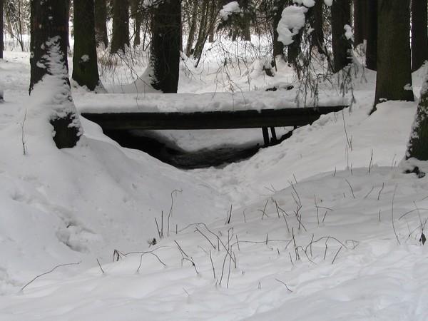 2010-season -winter-bridges