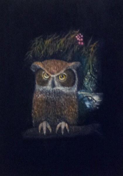 Owl On Duty