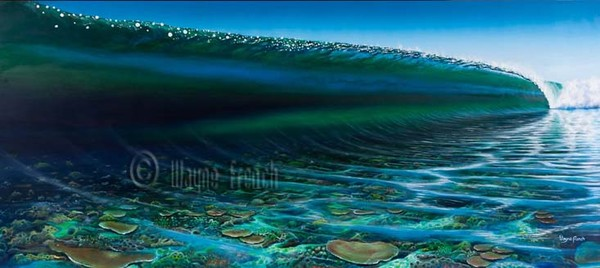Reef Visions