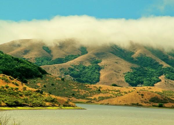 Nicasio Lake with Fog