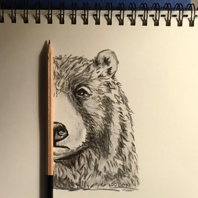 Bear divided..
