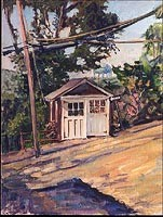 1911shed, Sea Cliff