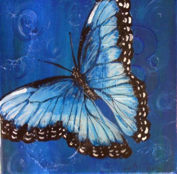 Blue Morpho - Wings