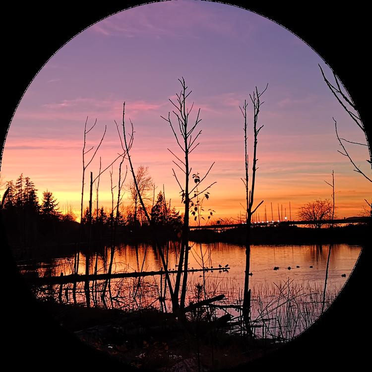 Sunset at Elgin Park