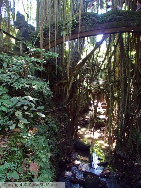 Bridge over Monkey Forest