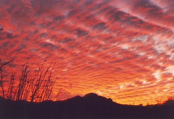 Arizona Sunset 4