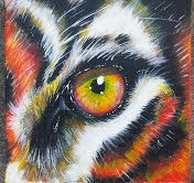 Eye Of The Tiger 10