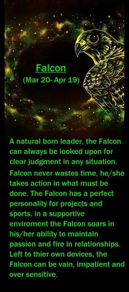 Native American Zodiac Sign, (Falcon)