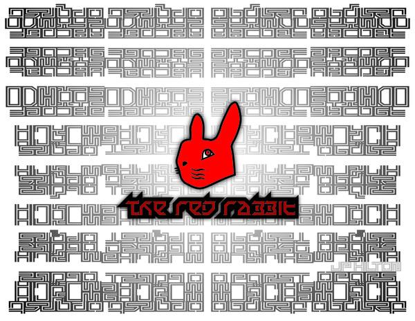 Rabbit Maze series 1