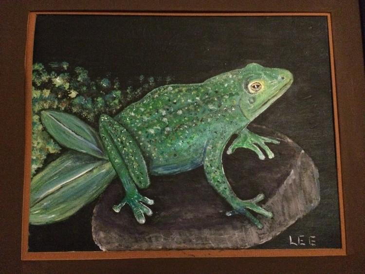 Frog on Stone