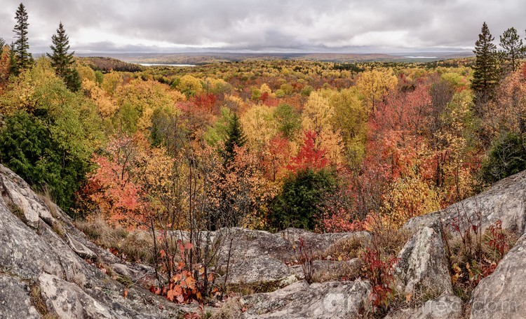 A lovely autumn day at Algonquin Provincial Park.