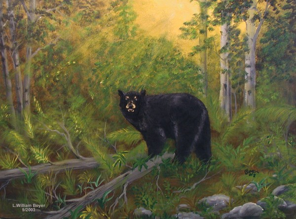 2003-47Ha 18x24 Bear in the woods