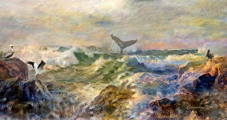 Whale of Waves   * 2019 Kiddolucaslee