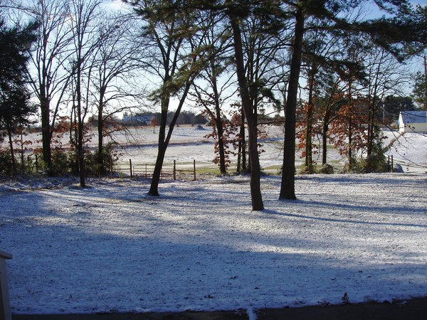 From Ozark House Porch in Snow
