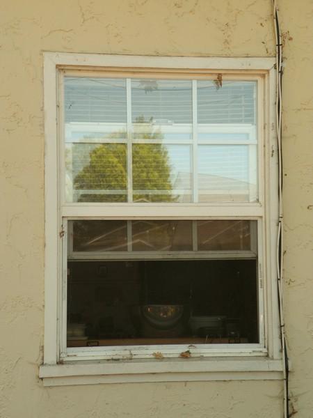 Orchard Street Window