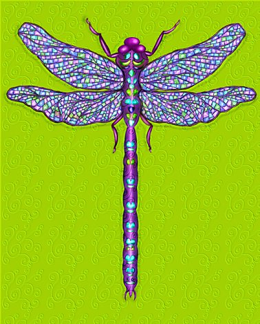 Jewelled Dragonfly