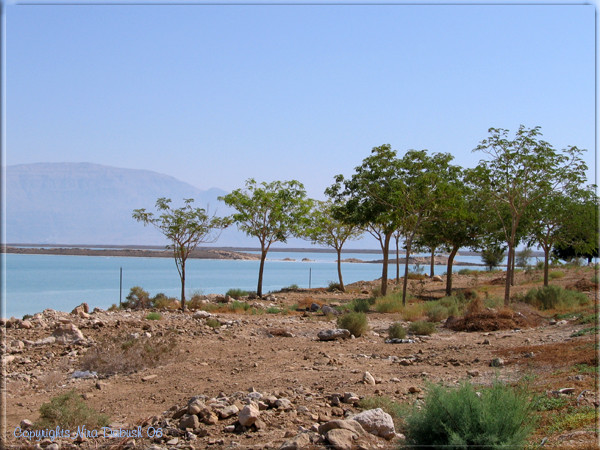 Colours of the Dead Sea