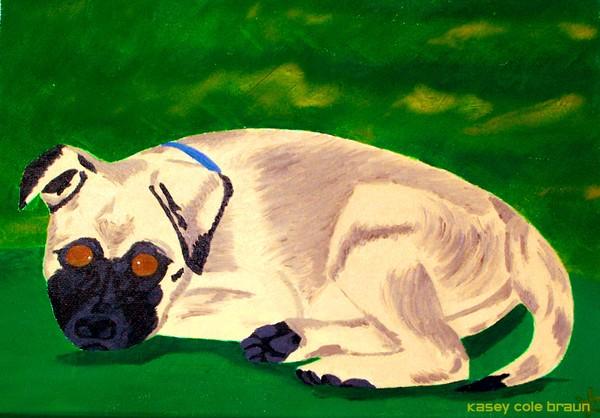 Dog 001 Pet Portrait