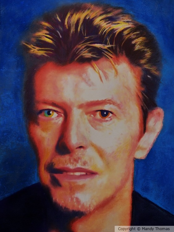 THE ILLUSTRIOUS BOWIE  by Mandy Thomas