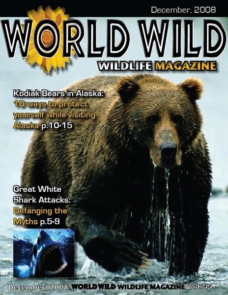 World Wild cover
