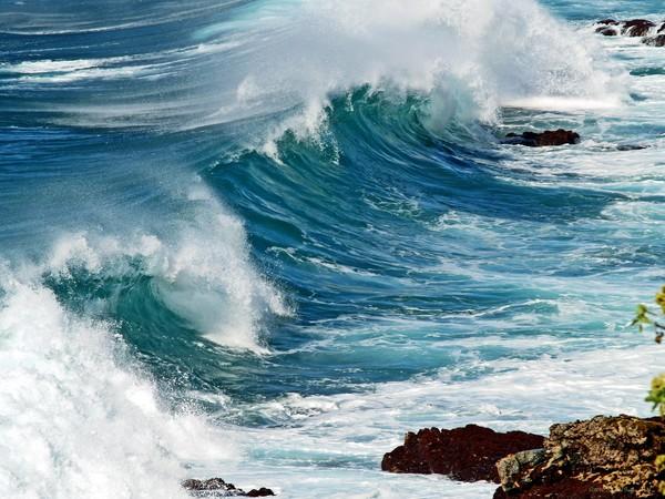 Ocean Majesty- Kauai, Hawaii