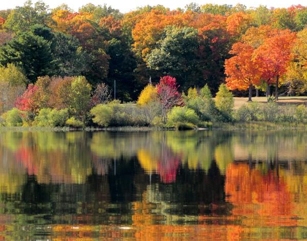 Northern Lake Color!