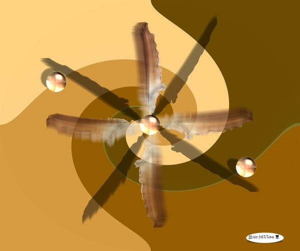 Four Winds Blow to Center