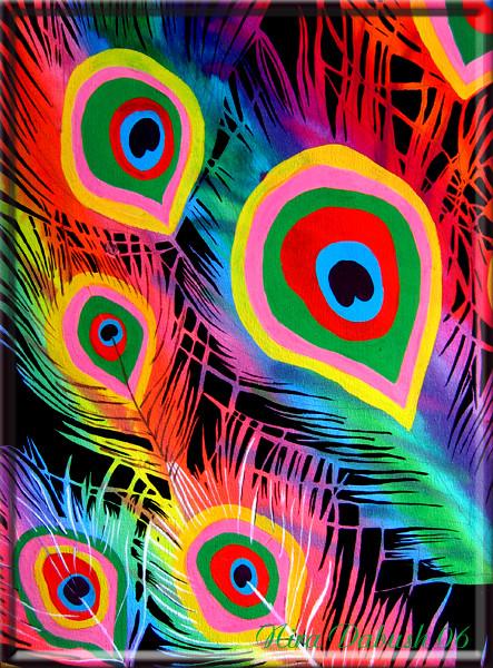 Rainbow Feathers of Peacock