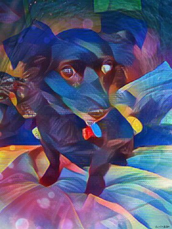 Road Dog Sam