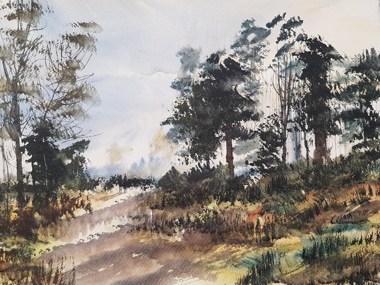 Nr Streetly Gate, Sutton Park Watercolour Painting by Steven Cronin