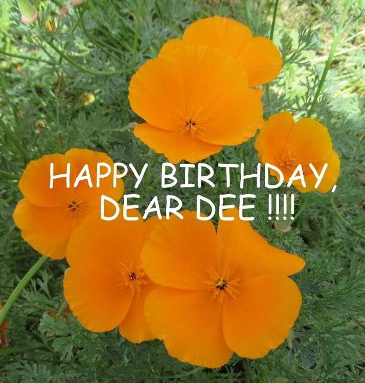 HAPPY BIRTHDAY, DEAR DEE !!!