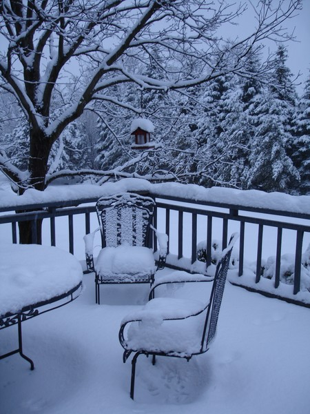 My Winter Back Porch