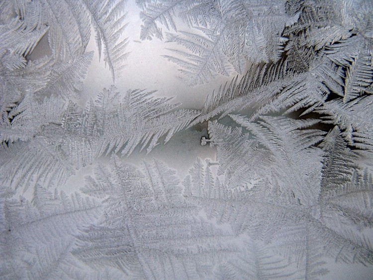 Frosted Pane
