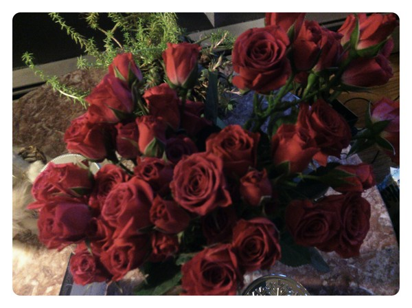 Christmas roses from joe
