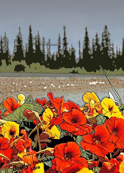 Yukon flowers