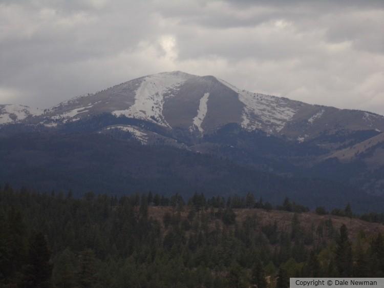 New Mexico Mountain Scene